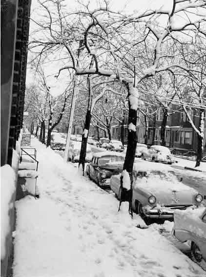 Image: Newark Story